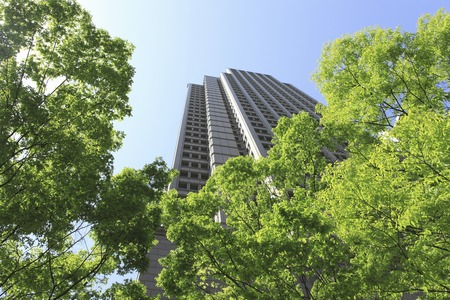 kita: Near Kitaku Umeda of Osaka fresh green