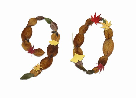 hojas secas: Car�cter de hojas secas, de espalda blanca Foto de archivo