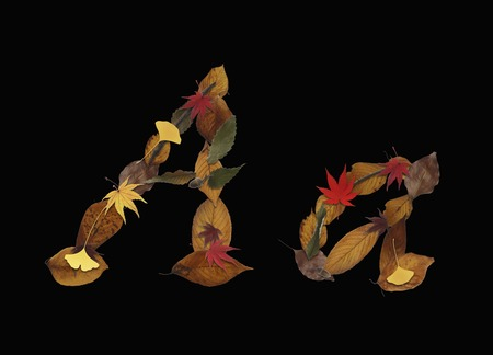 Character of dry leaves, black background