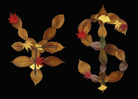 hojas secas: Carácter de hojas secas de fondo negro Foto de archivo