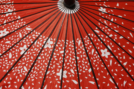 japanese background: Japanese umbrellas