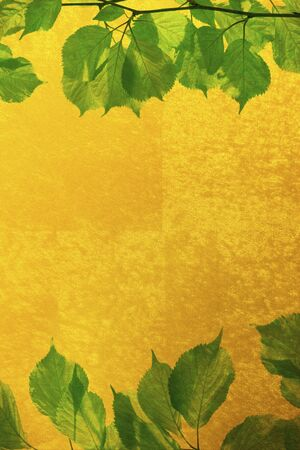 composite material: Gold folding screen and a fresh green background