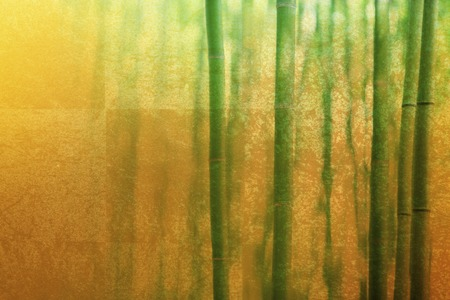 composite material: Gold folding screen and bamboo background