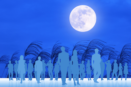diluted: Full moon and the crowd