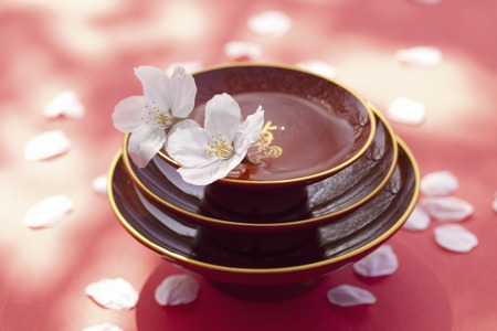 Cherry blossom petals with Cup