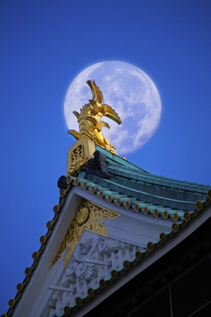 synthesis: Synthesis of the Osaka Castle and the moon