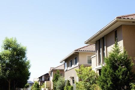 Les arbres de rue et quartier résidentiel