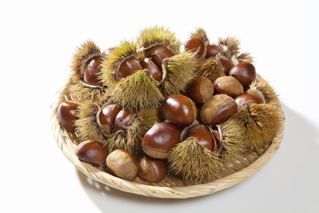 has been: Chestnut that has been piled on Takezaru Stock Photo