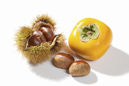 iga: White Background chestnut and persimmon