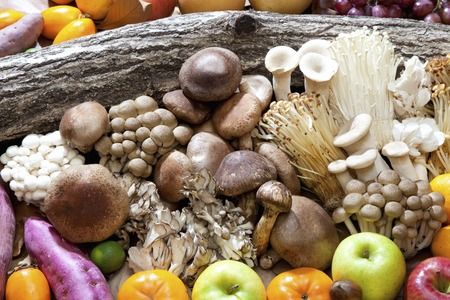 potato tree: Autumn food mushrooms and fruit