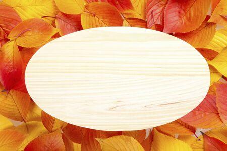 fallen leaves: The wooden board in fallen leaves background Stock Photo