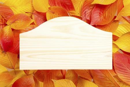 fallen: The wooden board in fallen leaves background Stock Photo