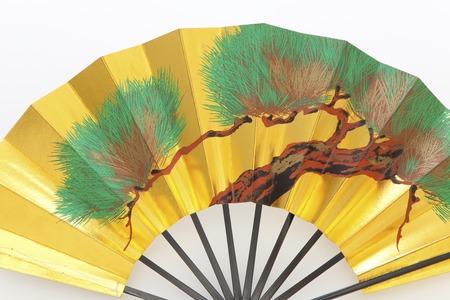 Japan dance fans photo