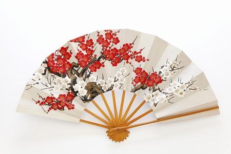 Fans de la danza de Japón