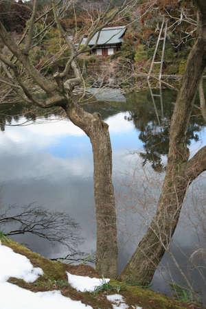 hojo: Ryoanji Temple KagamiHiroshi pond