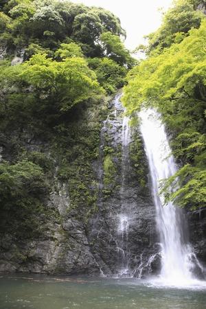 Minoh waterfall