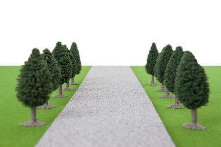 straight path: Tree-lined Avenue