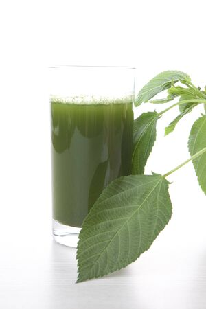 green vegetable: Green juice Jew Stock Photo