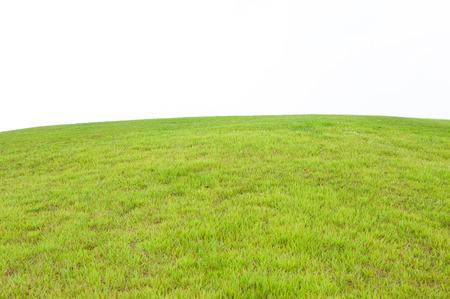ゴルフ場芝