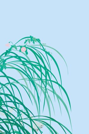 white lily: Pampas grass and bindweed and the white lily