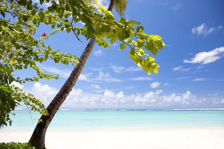 seawater: Beach Stock Photo