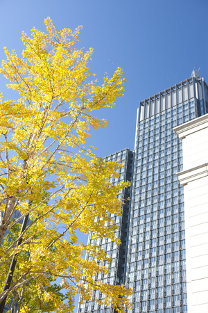 shin: Shin Marunouchi building Stock Photo