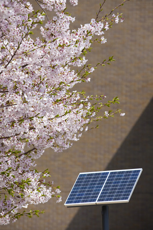 outage power: Solar panels of the schoolyard Stock Photo