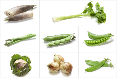 group photo: Group photo of spring vegetables