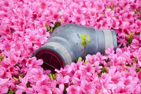 fire hydrant: Fire hydrant that is buried in the Kirishima azalea Stock Photo