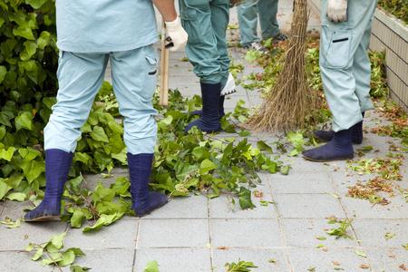 Pruning work