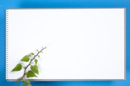 sketchbook: Sprout and sketchbook