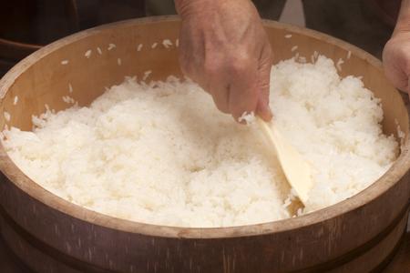 寿司米開発 写真素材