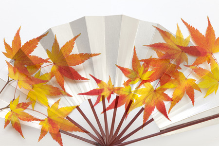 synthesis: Synthesis of fallen leaves and silver fan