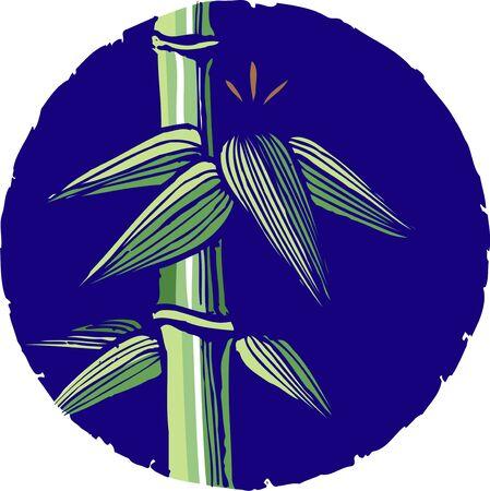 conifers: Bamboo