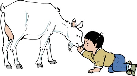 petting: The petting a goat