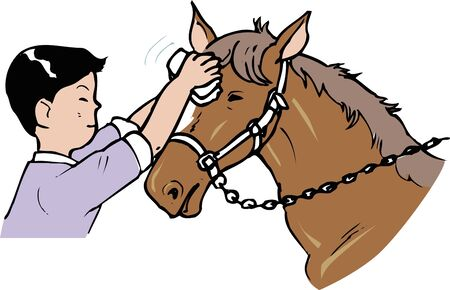 behaviours: The petting a horse