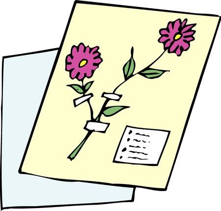 pressed: Pressed flowers