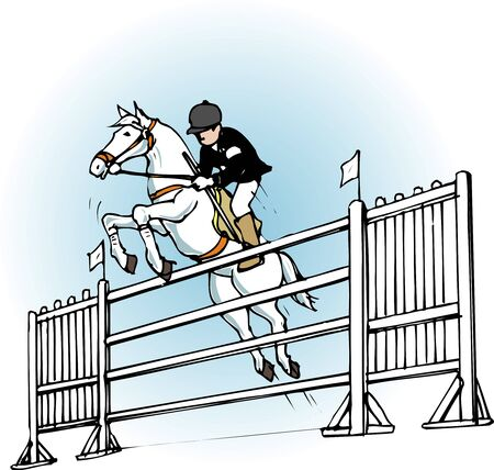 show jumping: Show jumping competition