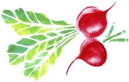 beet: Red beet