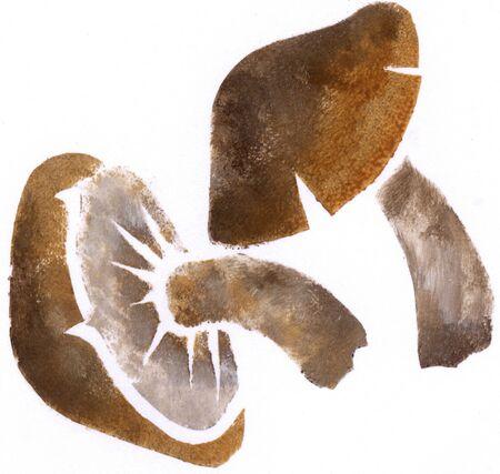 Shiitake mushroom 版權商用圖片