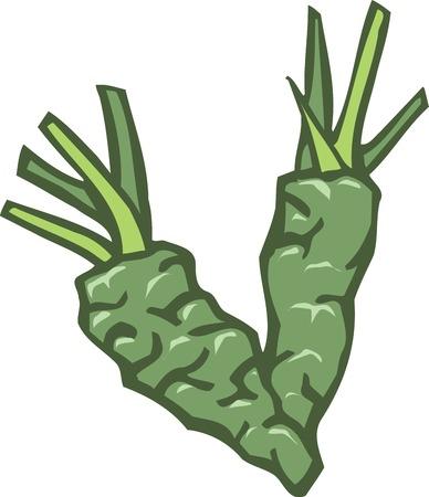 wasabi: Wasabi