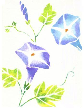 나팔꽃 스톡 콘텐츠 - 39634711