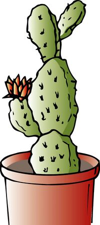 prickly pear: Prickly pear