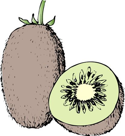 provisions: Kiwi