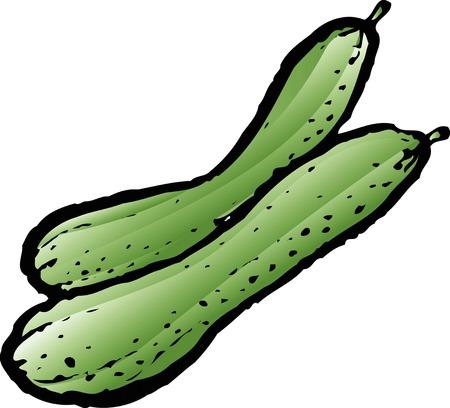 cucumber: Cucumber Stock Photo