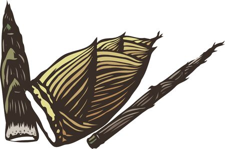 provisions: Bamboo shoots
