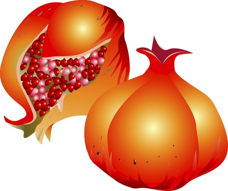 provisions: Pomegranate Stock Photo