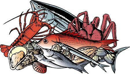 shellfish: Fish and shellfish Stock Photo