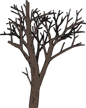 tree dead: Dead tree