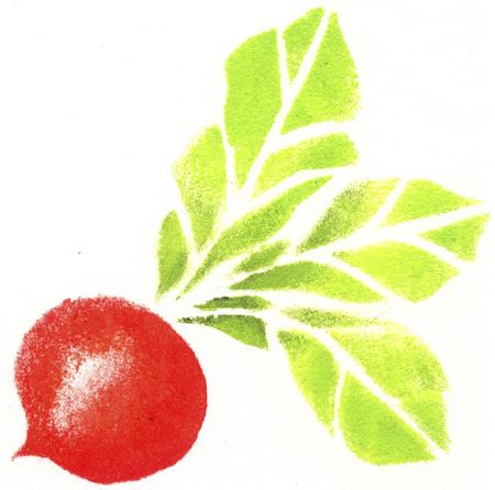 remolacha: Remolacha roja